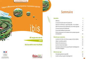 01ibis guide introduction